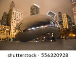 Chicago  Illinois  Usa  ...