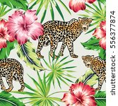 leopards with pink and red... | Shutterstock .eps vector #556377874
