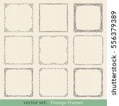 vector set of vintage frames on ... | Shutterstock .eps vector #556379389