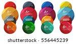 set of round option diagram... | Shutterstock .eps vector #556445239
