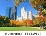 manhattan midtown skyline... | Shutterstock . vector #556519534