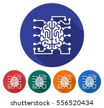 round icon of  brain as central ... | Shutterstock .eps vector #556520434