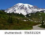 Mount Rainier With Path
