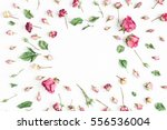 Stock photo flowers composition frame made of dried rose flowers on white background flat lay top view 556536004