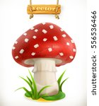 Fly Agaric Mushroom. 3d Vector...