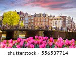 traditional old buildings and...   Shutterstock . vector #556537714