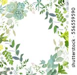 herbal mix square vector frame. ... | Shutterstock .eps vector #556559590