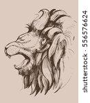 lion head. vector illustration | Shutterstock .eps vector #556576624