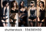 set of photos with beautiful... | Shutterstock . vector #556585450