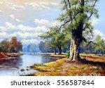 fine art  landscape  river  oil ... | Shutterstock . vector #556587844