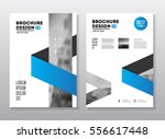business brochure design.... | Shutterstock .eps vector #556617448