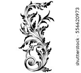 vintage baroque ornament ... | Shutterstock .eps vector #556620973