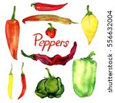 peppers set  isolated hand... | Shutterstock . vector #556632004