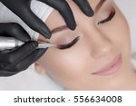 cosmetologist making permanent... | Shutterstock . vector #556634008