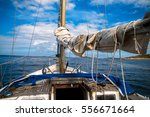 yacht  sail down  motoring into ... | Shutterstock . vector #556671664