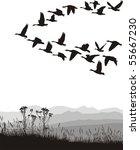 black and white illustration of ... | Shutterstock .eps vector #55667230
