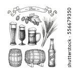 beer set. vector illustration... | Shutterstock .eps vector #556679350