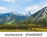 mountains near banff  alberta ... | Shutterstock . vector #556680868