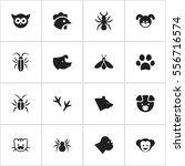set of 16 editable animal icons....