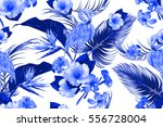 tropical flowers  palm leaves ... | Shutterstock .eps vector #556728004