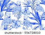 tropical flowers  palm leaves ... | Shutterstock .eps vector #556728010