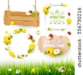 spring collection of labels ... | Shutterstock .eps vector #556750216