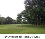 public park | Shutterstock . vector #556794283