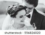 sensual black and white... | Shutterstock . vector #556826020