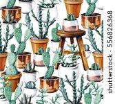watercolor cactus tropical... | Shutterstock . vector #556826368