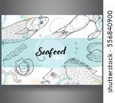seafood design template ... | Shutterstock .eps vector #556840900