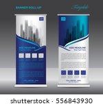 blue roll up banner template... | Shutterstock .eps vector #556843930