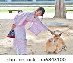 Nara  Japan   June 6 2016 ...