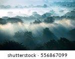 Fog Landscape    Sunrise...