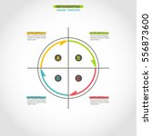 infographics design circle... | Shutterstock .eps vector #556873600