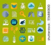 set of veterinary flat icons   Shutterstock .eps vector #556880830