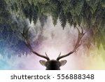 double exposure of an antler...   Shutterstock . vector #556888348