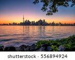 toronto city skyline at night ... | Shutterstock . vector #556894924