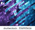 sequins close up macro....   Shutterstock . vector #556905616