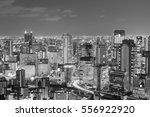 black and white  osaka city... | Shutterstock . vector #556922920