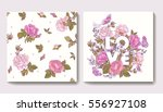 set of seamless patterns with... | Shutterstock .eps vector #556927108