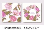 set of seamless patterns with... | Shutterstock .eps vector #556927174