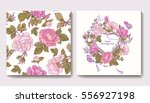 set of seamless patterns with... | Shutterstock .eps vector #556927198