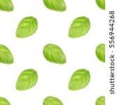 basil leaf seamless pattern   Shutterstock . vector #556944268