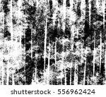 grunge textures. background.... | Shutterstock .eps vector #556962424