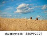 boys in a field in the village... | Shutterstock . vector #556992724