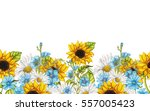 seamless border of watercolor... | Shutterstock . vector #557005423