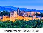 alhambra of granada  spain....   Shutterstock . vector #557010250