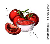 tomato sauce drawing. vector... | Shutterstock .eps vector #557011240