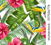 seamless pattern with tropical... | Shutterstock .eps vector #557036776