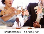 guests clang their glasses with ... | Shutterstock . vector #557066734